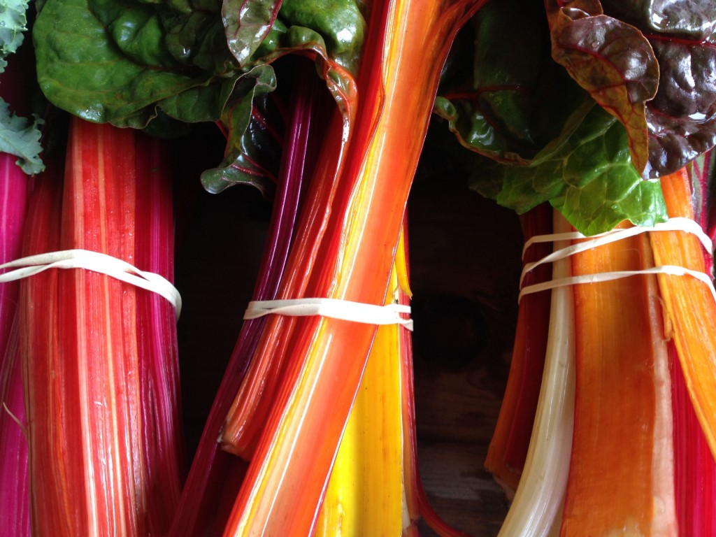 Rainbow chard